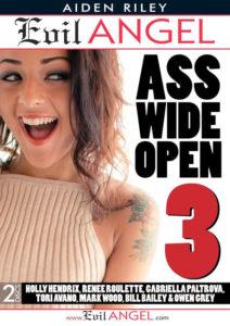 ass-open3